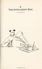 The Intelligent Dog