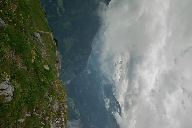26.06.2009 - Schyniger Platte SDIM0341