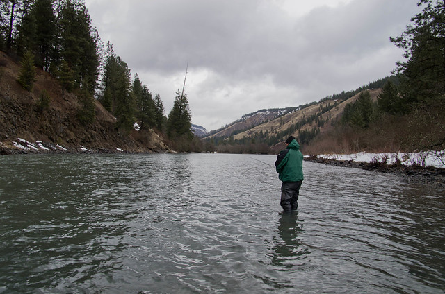 Steelhead fishing the Wallowa River