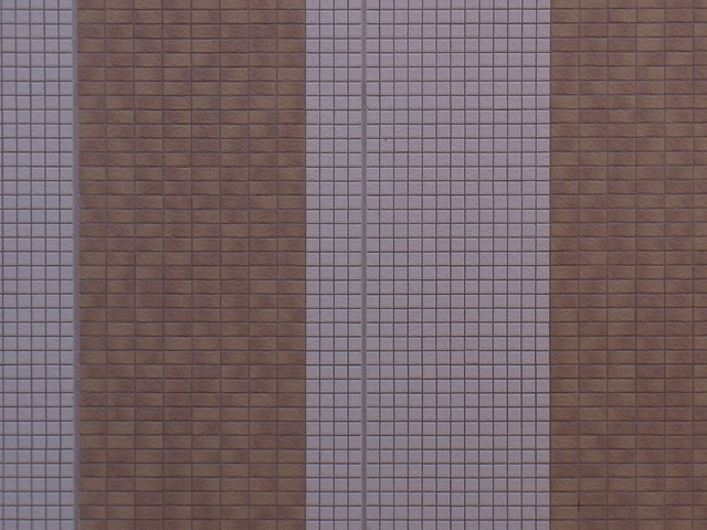CX5 歪曲収差テスト(100mm相当)