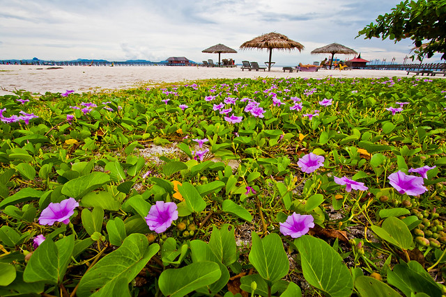 Mabul Island, Semporna, Sabah