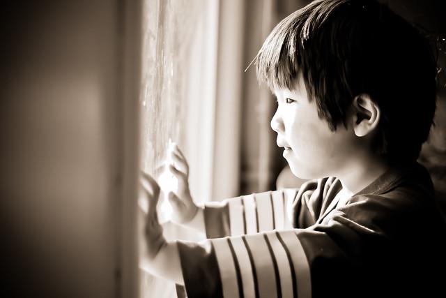 window_