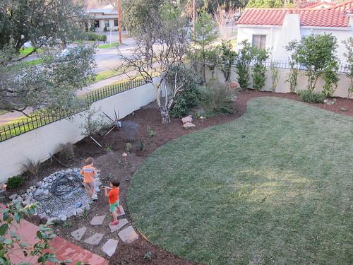 Finally a lawn!