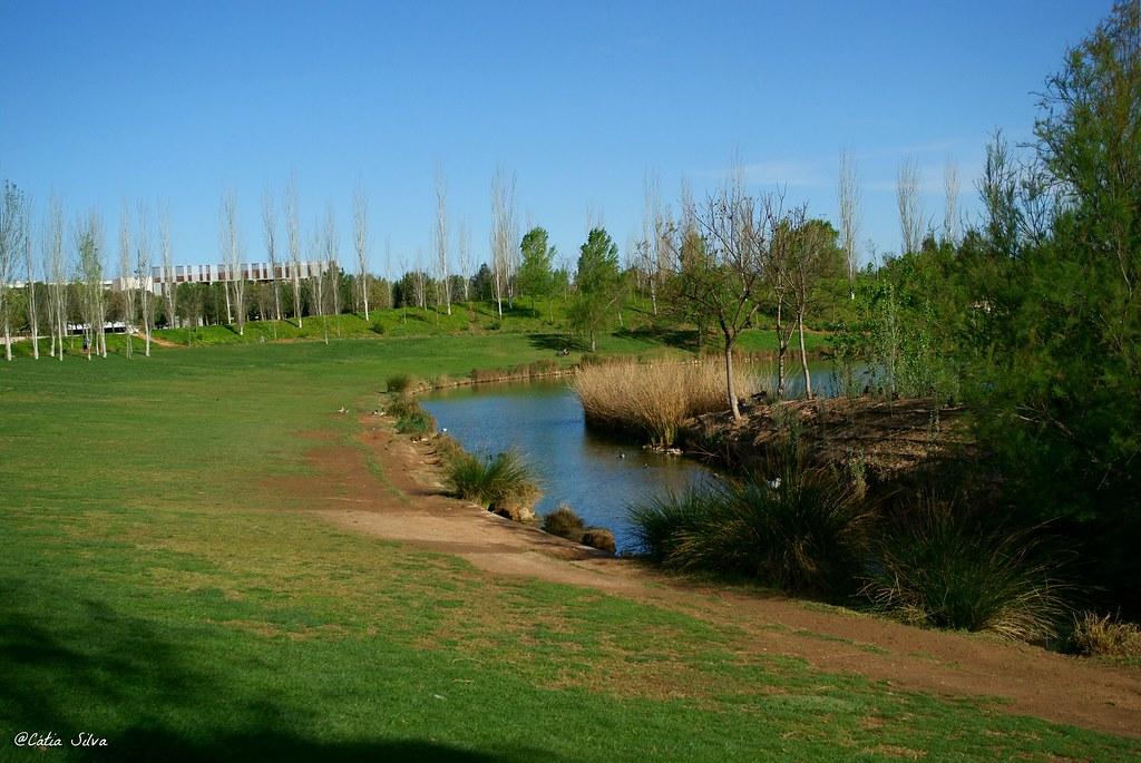 Valencia_Primavera_ Jardines del Turia (1)