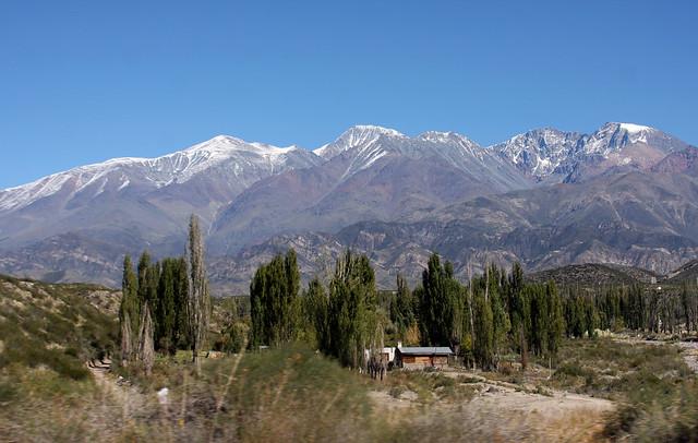 Mendoza 26