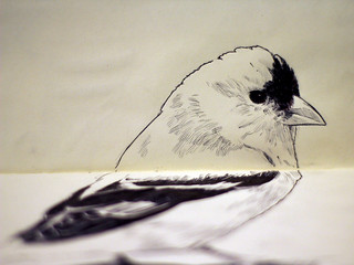goldfinch_2