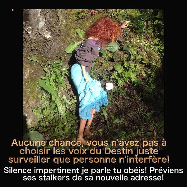 Y a pas que les mortemiamor dans la vie y a les bonsenfants  - Page 3 26518838460_daff7d3cbf_z