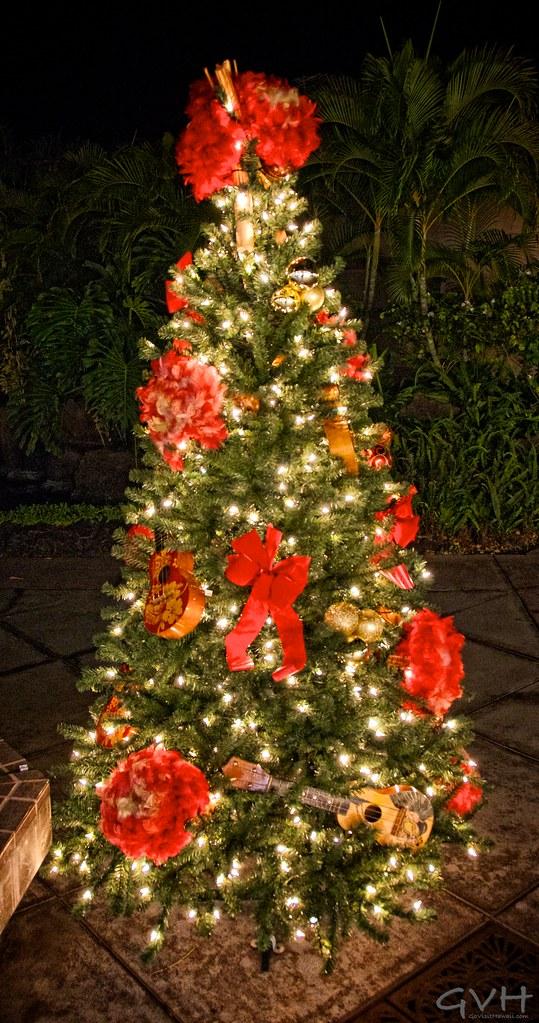 Hawaiian Christmas Tree Go Visit Hawaii Flickr