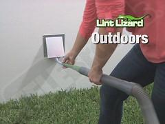 Lint Lizard 7