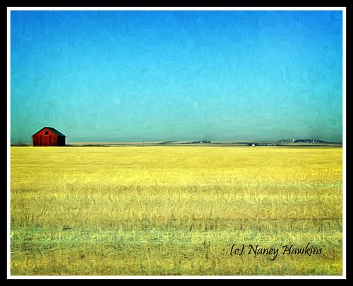 Prairie Space by Nancy Hawkins