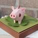 2 pig:varken