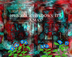 OPEN YOUR WINDOWS  IT'S X'MAS!