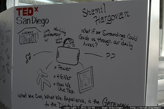 graphic recording by Jeannel King at TEDxSanDiego – _MG_3741