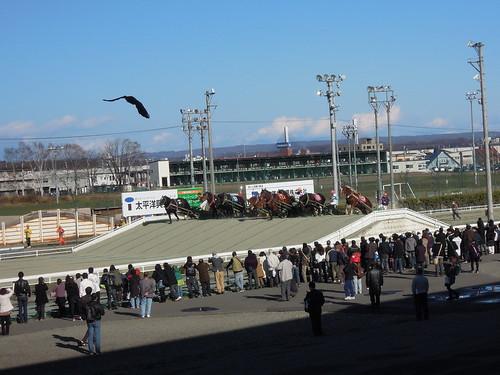 ばんえい競馬では、山が2箇所に設けられており、そこを馬が力強く登っていくのが見どころである。ここは最初の山を登っているところ。