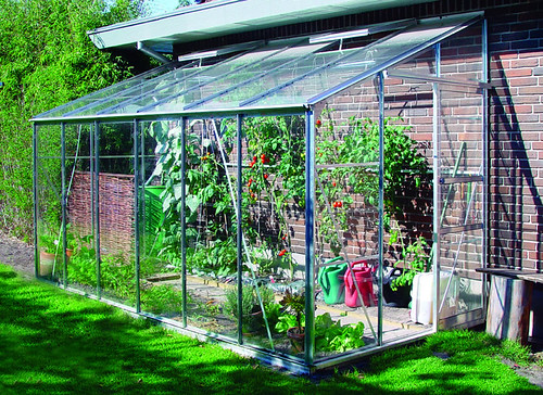 Eden Lean to Greenhouse 6 x 12 Toughened