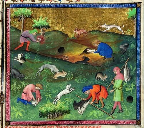 011-Le Livre de la chasse-1407- Gaston Phoebus- MS M. 1044 – fol. 82-detalle -© The Morgan Library & Museum