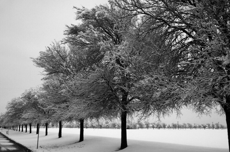 Snow Dallas 1