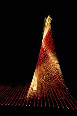 Cylindrical Tree Warp