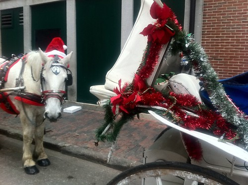 And So This Is Christmas! - Christmas Horse