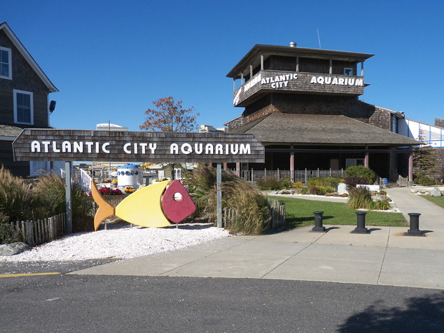 Atlantic City Aquarium 003 Flickr Photo Sharing