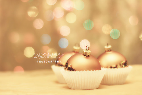 embed copyright and metadata in your photos - christmas Bauble Cupcakes