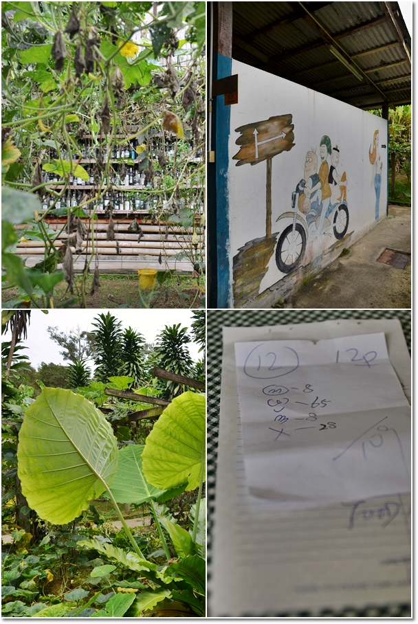 Big Leaves, Lao Fu Zhi & The Symbols