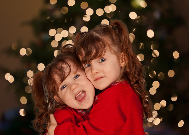 344/365 - December 10, 2011 - Christmas Card 2011