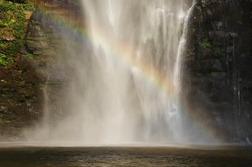 tree fall water beauty rainbow horizon hill falls hills waterfalls vapour