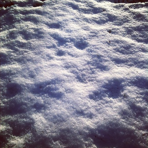 Goodbye snow. You were so sparkly.