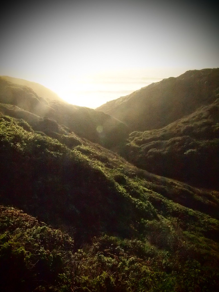 9 mi loop, Big sur