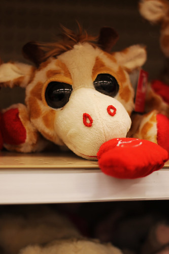 Cute little Giraffe (164)