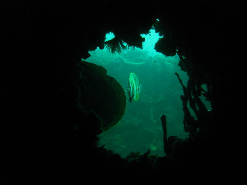 Morazan Wreck Dive