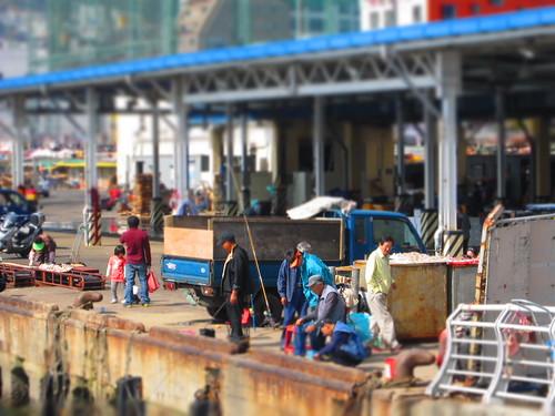 ahjussi in Busan port, near Jagalchi Market