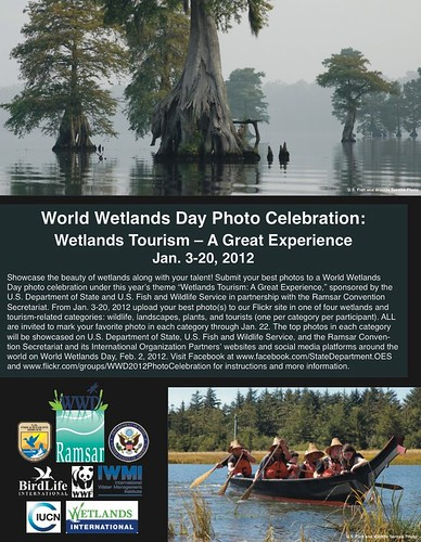 World Wetlands Day Photo Celebration
