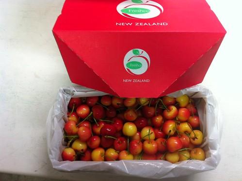 白櫻桃-紐西蘭白櫻桃