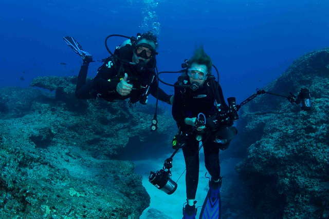 Wyland/Earle First Dive Together! Midway Atoll
