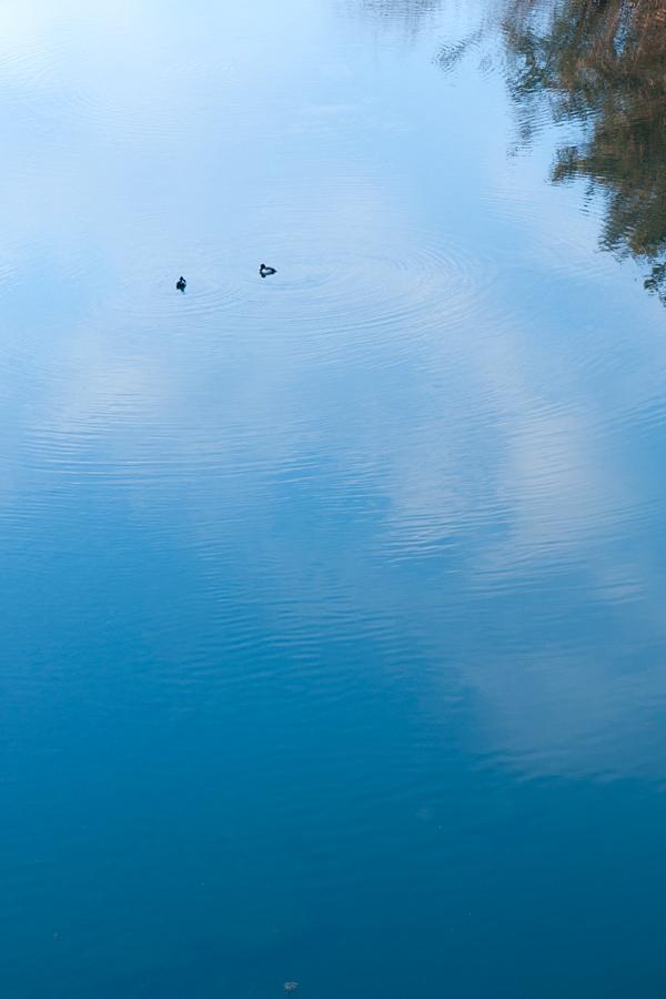 川面|滋賀県野洲市