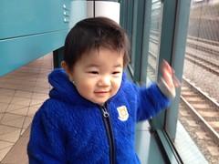 YGPとらちゃん(2012/1/15)