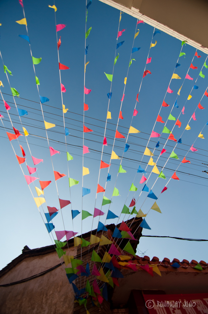 Flags for Chinese New Year