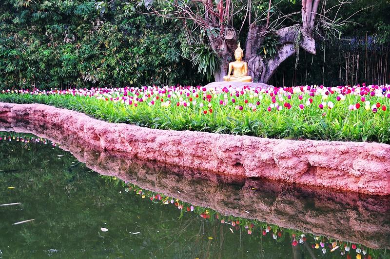 Garden Buddha, Chiang Mai