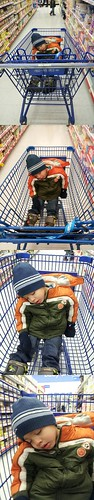 Si asleep in the cart at Walmart by Yvette's Photos