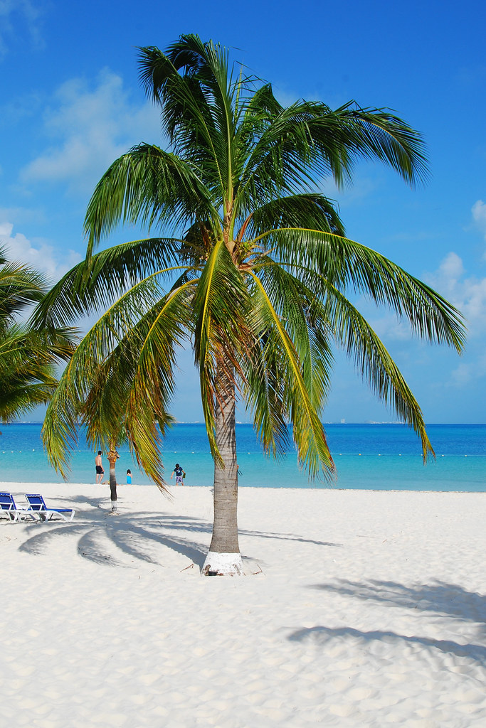 6782202569 d95de86983 b 14 Amazing Beaches Around the World