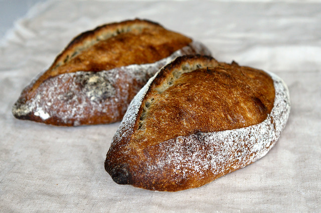 6783650311 eb54b4f1ab z San Joaquin Sourdough   preview