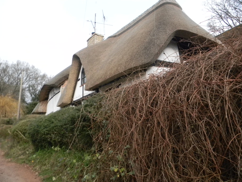 Thatched house Aldermaston to Woolhampton