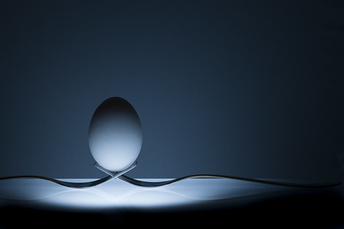 Egg Photography