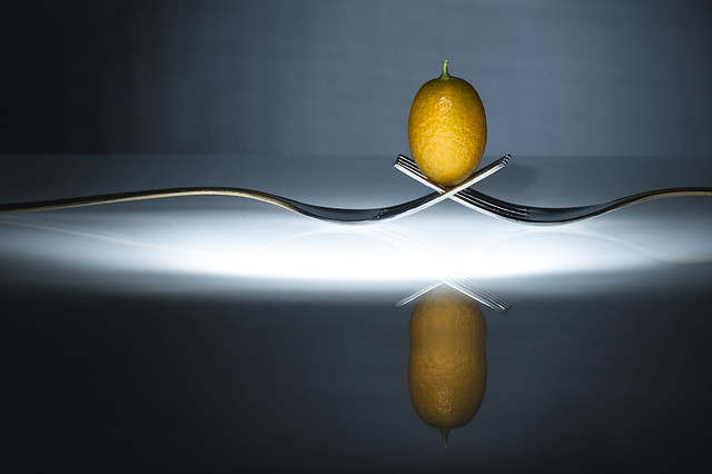 Egg (safer kumquat replacement) Photography