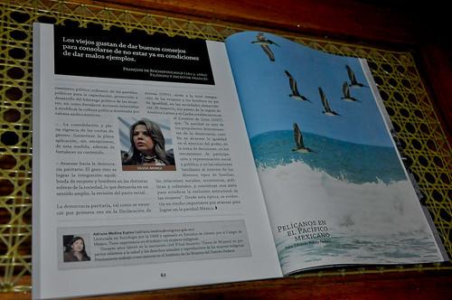 Revista Cámara - Noviembre 2011 (2)