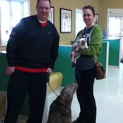 SPCA day at swedesboro animal hospital!!!