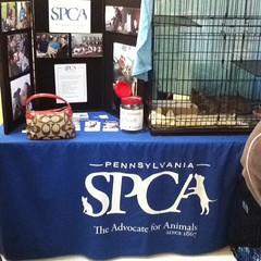 SPCA Day!! Save a life!! 10-2