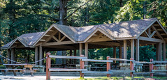 Sequoia Group Picnic Area